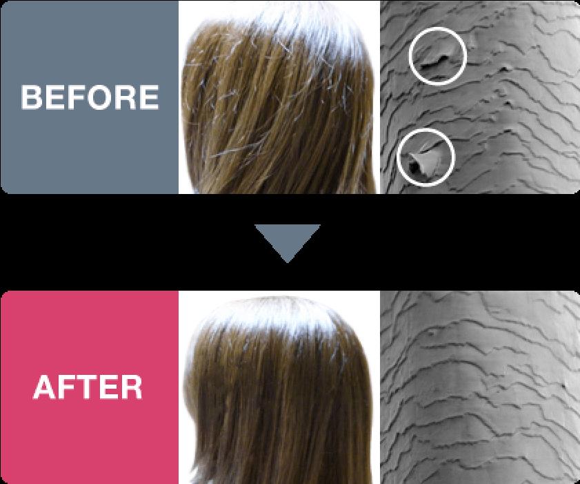 髪の毛で、椿なのの効果を比較したBEFORE AFTER
